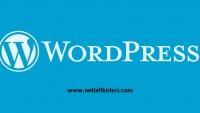 WordPress Kurulum İpuçları